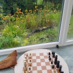 Play chess, play games, Read, Relax