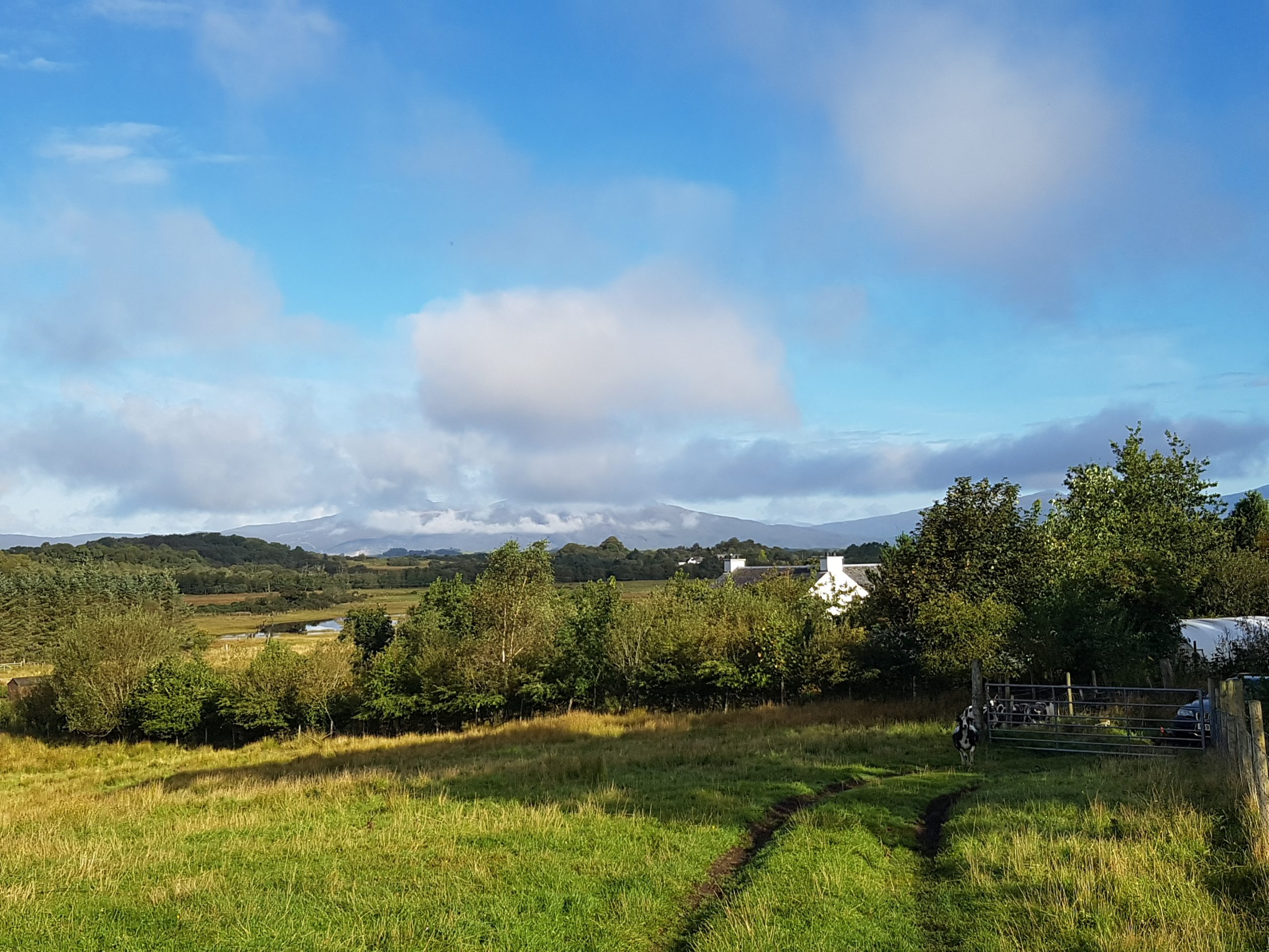 peace and quiet in rural farm setting