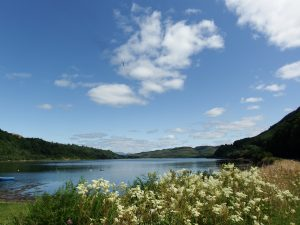 Loch loch views, get out on the water